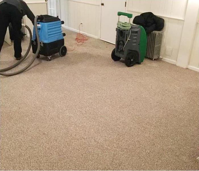 Cleaning Why Hiring Professional Carpet Cleaners Is Important