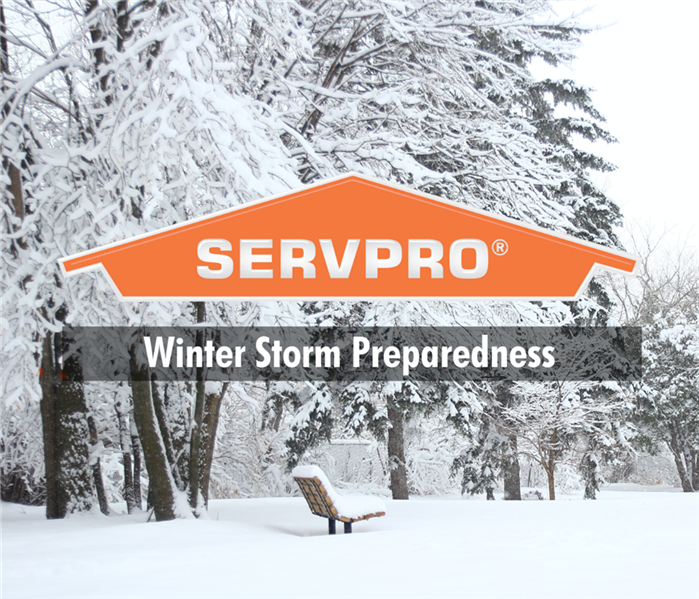 "snow storm with servpro logo and text "" winter storm prepardness"""
