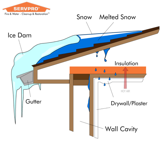 Ice Dam damage infographic water leaking from roof into home creating water damage
